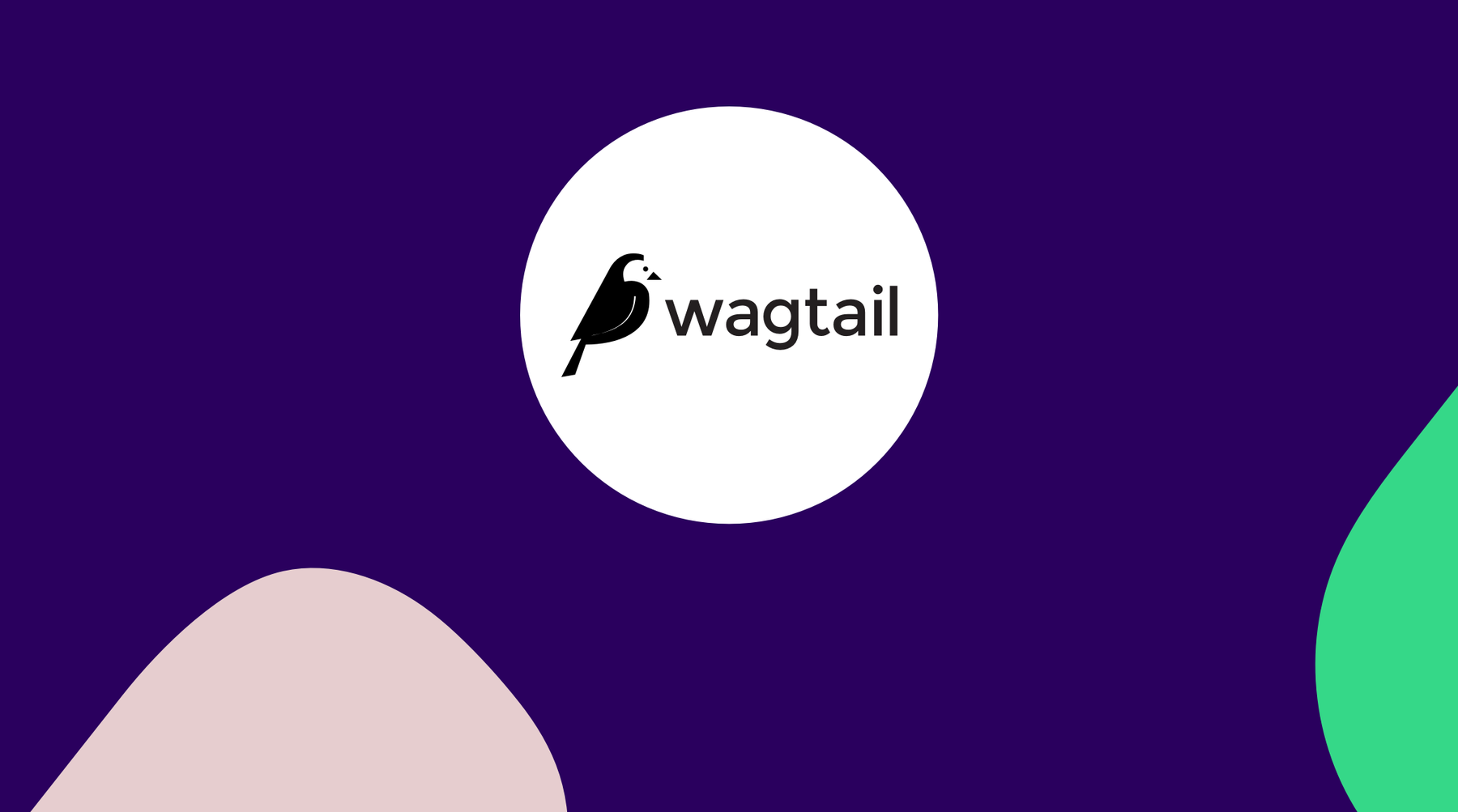 wagtail_1_HVE2fbC.png